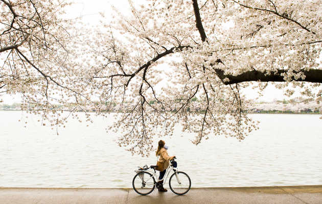 The Best Places to Exercise Outside in Washington, DC