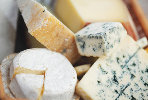 Variety of delicious cheese
