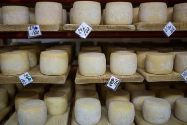 Semi Hard Cheeses