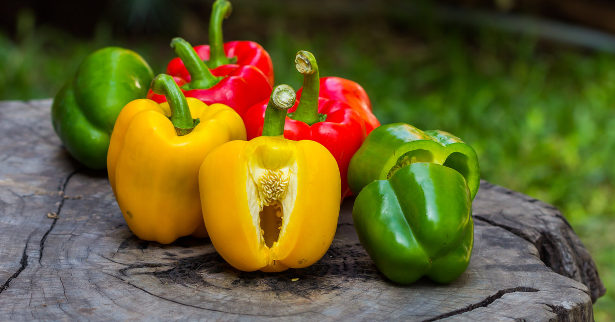 the difference between red and green peppers explained thrillist