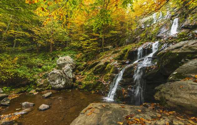 DC-Area Waterfalls We're Excited to Hike to This Summer