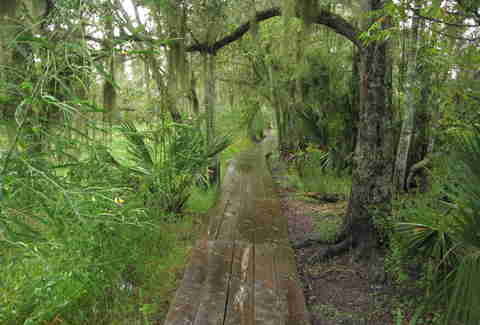 Jean Lafitte National Historic Park and Preserve