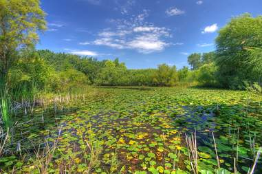 Lake County Forest Preserves illinois