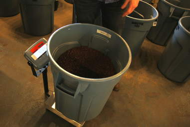Weighing final step in coffee roasting process