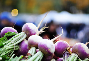 Tucker Square Greenmarket