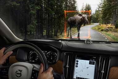 2017 Volvo S90 with Moose Detection System