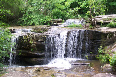 Shawnee National Forest in Illinois