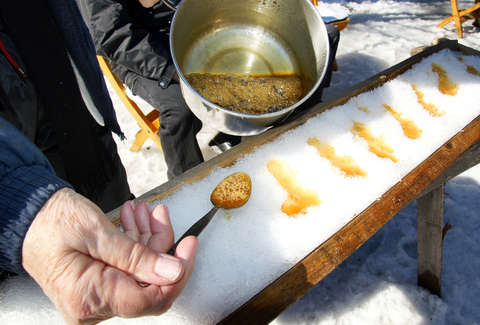 Maple syrup candy in Quebec