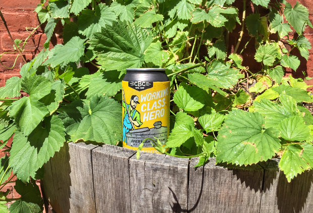What Beers Should You Drink This Summer in Boston? We Tried Them All to Find Out.