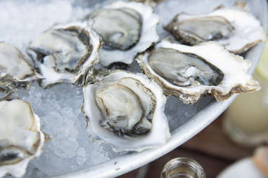 Oysters at Hog Island Oyster Co.