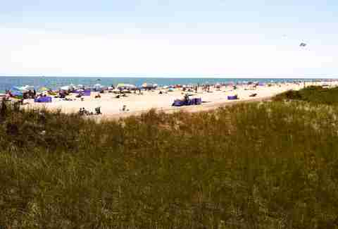 Robert Moses State Beach