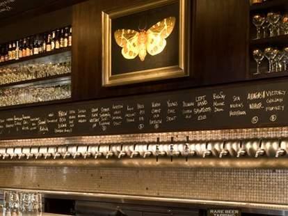 the meddlesome moth bar