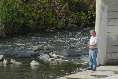 fishing la river