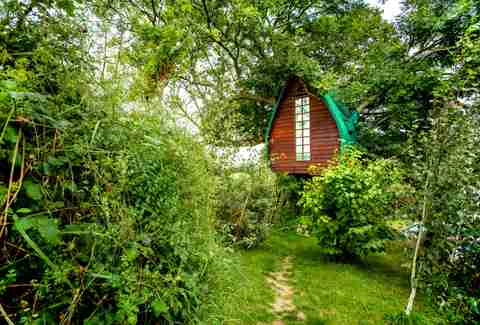 Airbnb Treehouse England