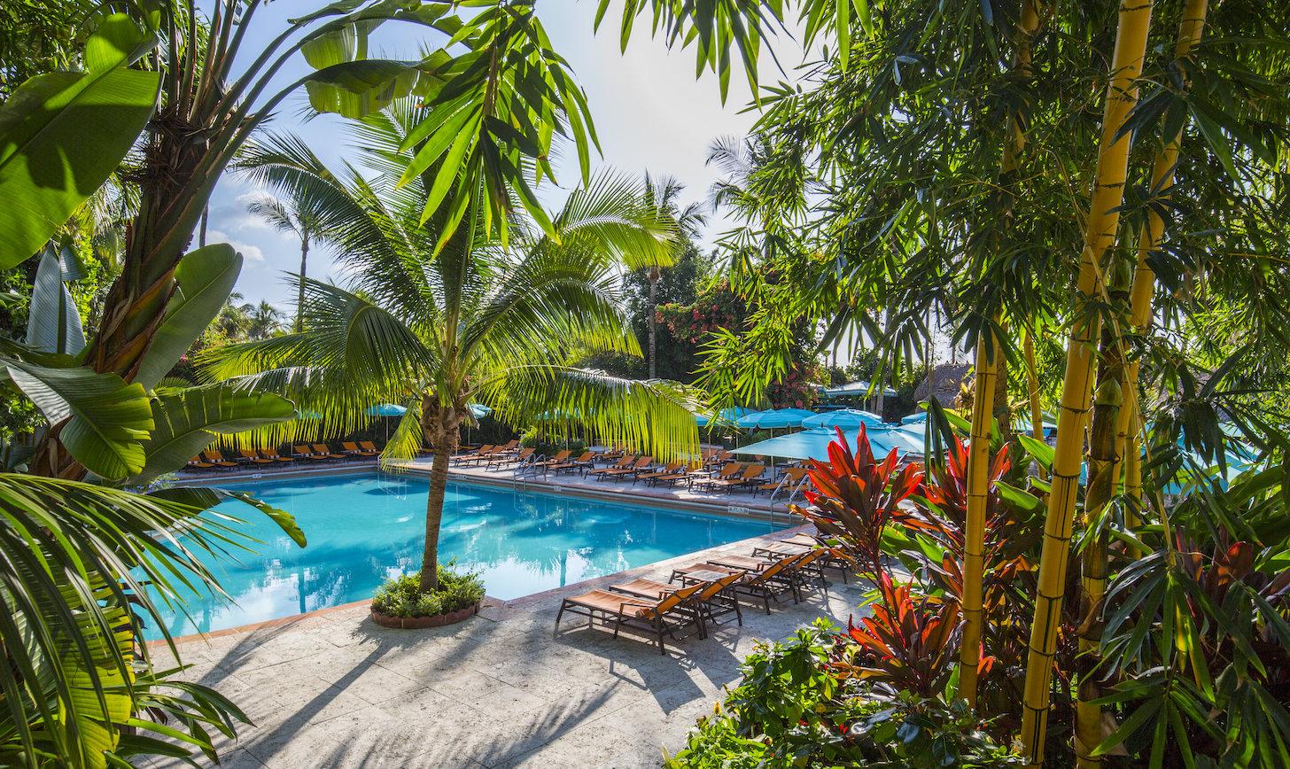 How to Sneak Into 13 Miami Pools