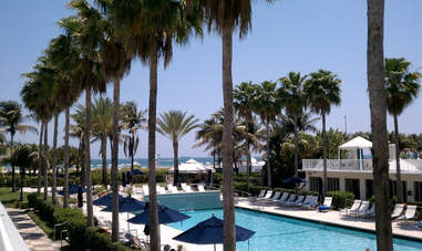 Surfcomber South Beach pool