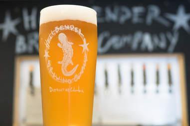 Hellbender Brewing beer