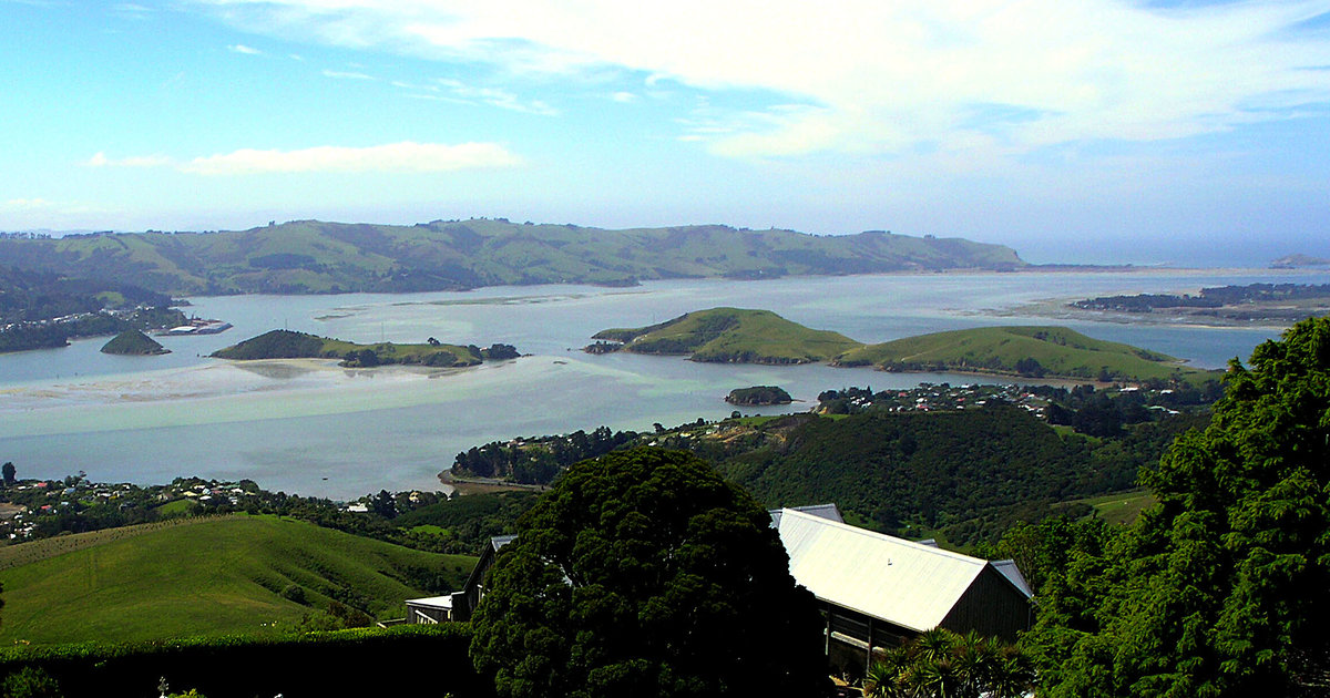 This New Zealand Town with 'Too Many Jobs' Needs You to Move There