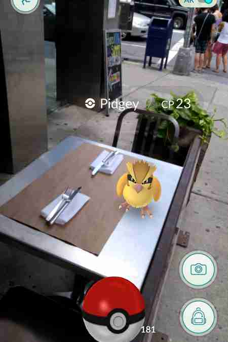 Pidgey in Pokemon Go