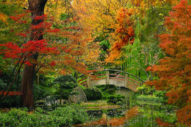 Ft. Worth Botanical Garden