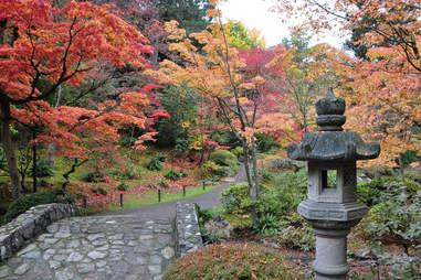 Washington Park Arboretum Seattle