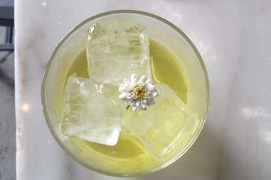 Acorn cocktail Denver