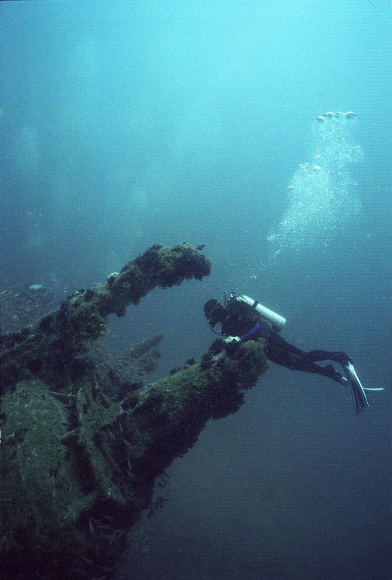 U-352 North Carolina