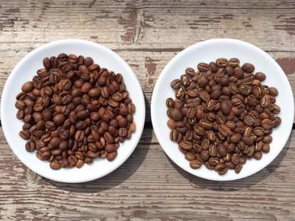 Peregrine Espresso