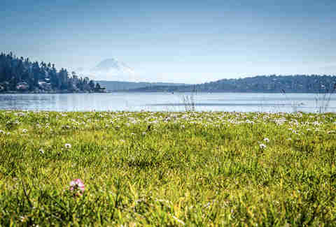 Seward Park Seattle Washington