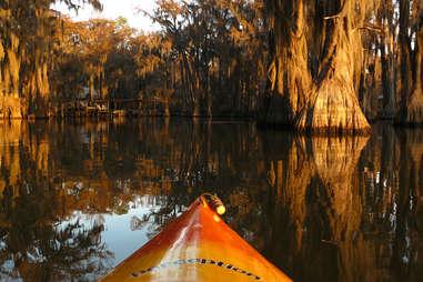 Kayaking Caddo lake Texas