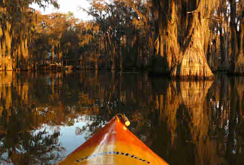 Kayaking Caddo lake Texas