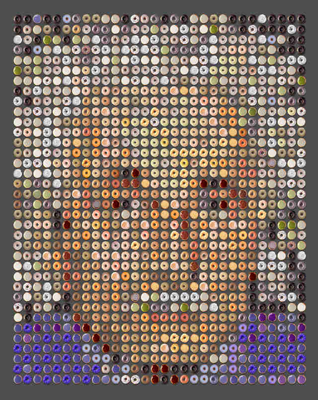 Albert Einstein Donut portrait