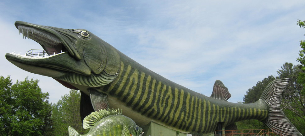 Amazingly Weird Wisconsin Roadside Attractions We're Totally Visiting This Summer