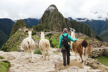 female traveling looking at Machu Picchu