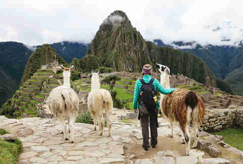 female traveling looking at Machu Picchu