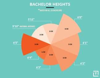 bachelor heights