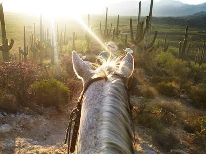 Riding a horse in Arizona