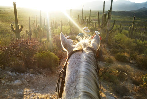Riding a horse in Arizona