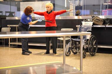 TSA Metal Wand
