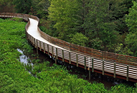 Atlanta\'s Most Scenic Running Paths