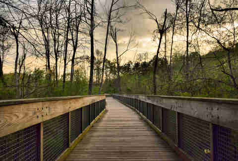 Suwanee Greenway Trail Atlanta