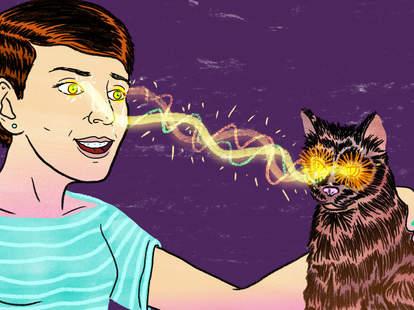 Cat making a woman crazy
