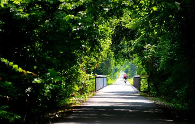 The Most Beautiful Running Paths in Memphis