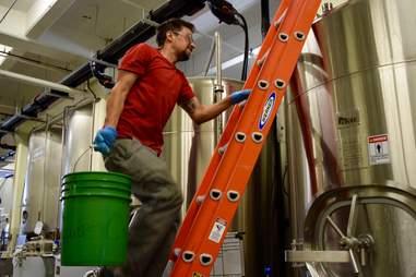 avocado beer fermentation