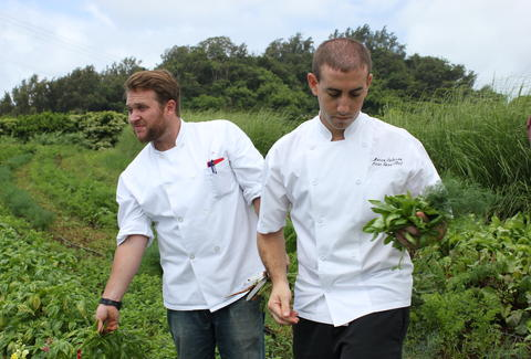 chefs forage hawaii