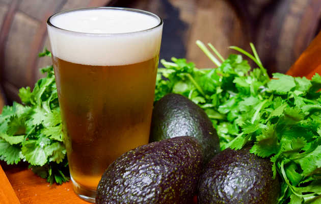 How Angel City Brewery Makes Its Famous Avocado Beer