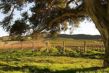 Lompoc Wine Trail