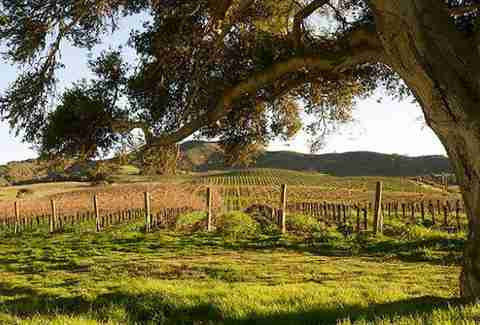 Lompoc Wine Trail