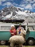 VW bus couple and llama