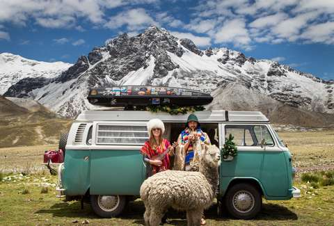 VW bus couple and llama